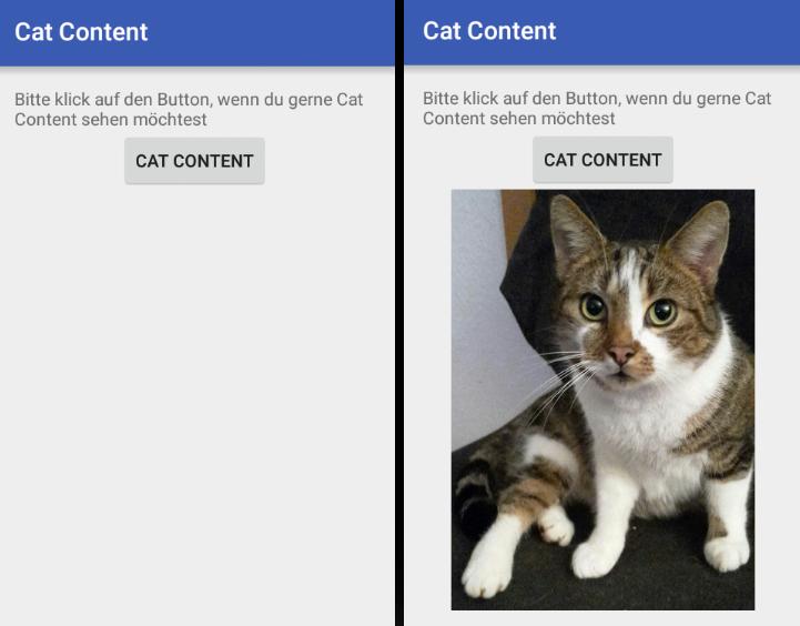 """Vorher und Nachher: Klick auf """"Cat Content"""" jetzt mit echtem Cat Content"""