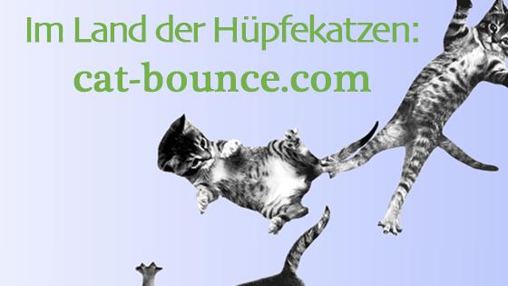 Im Land der Hüpfekatzen: cat-bounce.com