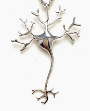 Sooo eine schöne Nervenzelle