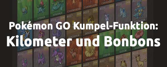 Pokémon GO Kumpel-Funktion: Kilometer und Bonbons